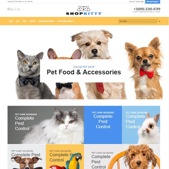 thiết kế website bán thú cưng tại thái Bình giá rẻ